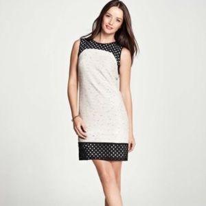 Ann Taylor Tweed & Eyelet Bordered Shirt Dress
